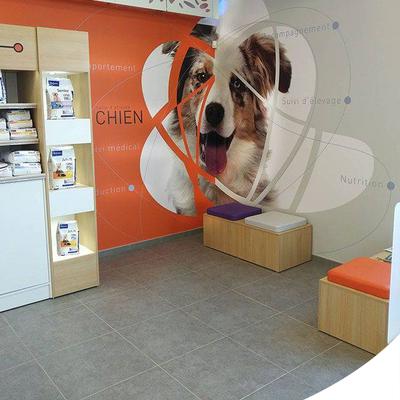Salle d'attente vétérinaire